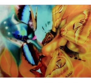 Lámina fotografia en cristal BESO