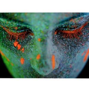 Lamina fotografia en cristal FRIO